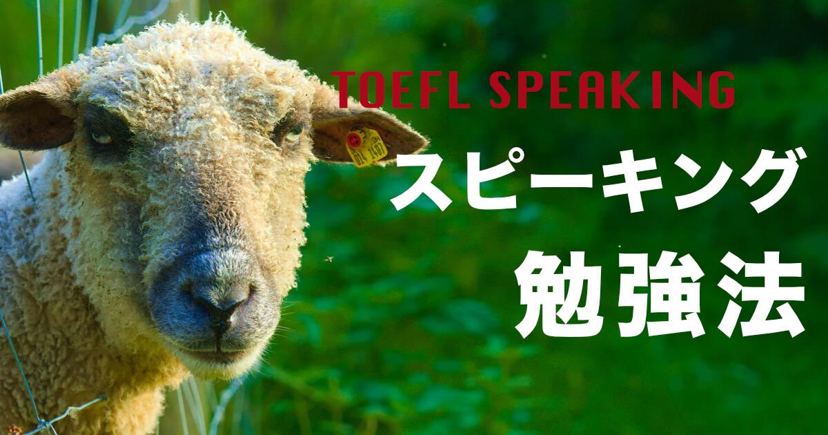 TOEFLのSpeakingが「難しい」と感じる人は勉強法を見直してみて【スピーキング】