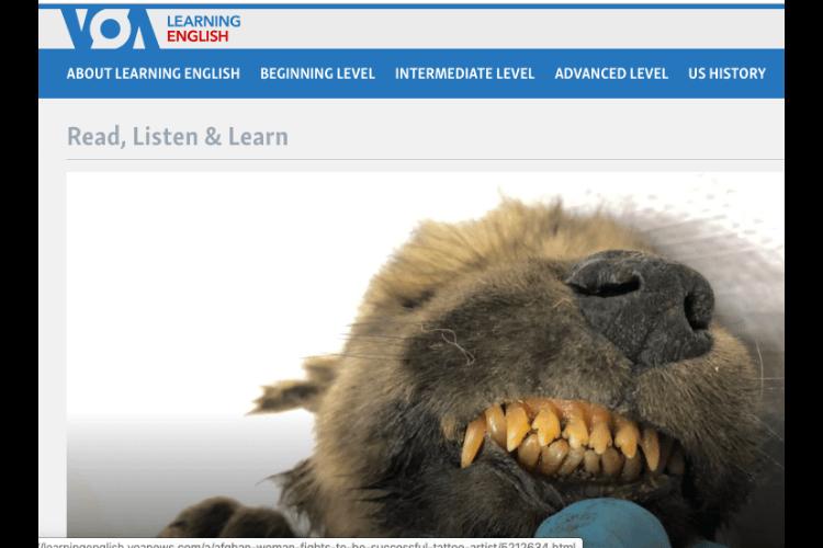 TOEFL対策にオススメのVOA Learning English参考動画