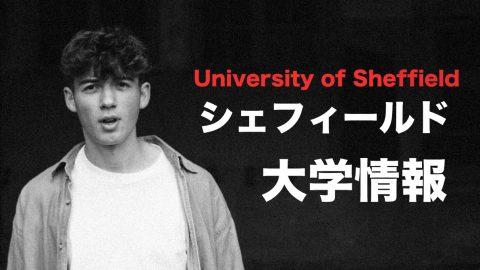 シェフィールド大学留学情報